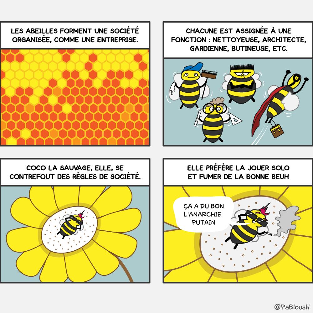coco-abeille-bd